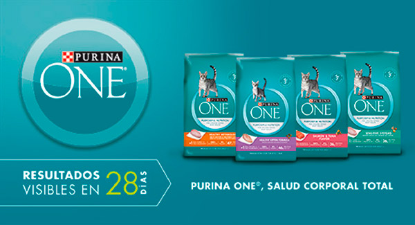 Purina One Cat