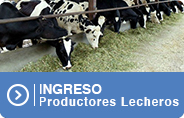 Ingreso Productores